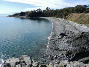 Cattle Point Beach, San Juan Island, WA. Photo: Travis S. (CC BY-NC 2.0) https://www.flickr.com/photos/baggis/8089171175