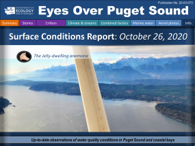 Eyes Over Puget Sound report cover