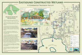 Eastsound Constructed Wetland flyer