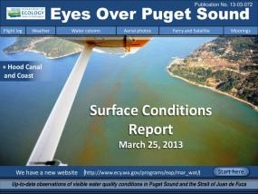 Eyes Over Puget Sound: Surface Conditions Report - March 25, 2013