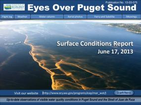 Eyes Over Puget Sound: Surface Conditions Report - June 17, 2013