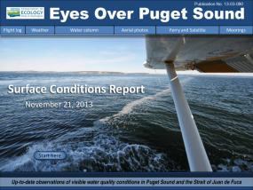Eyes Over Puget Sound: Surface Conditions Report - November 21, 2013