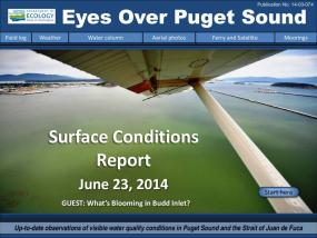 Eyes Over Puget Sound: Surface Conditions Report - June 23, 2014