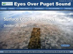 Eyes Over Puget Sound: Surface Conditions Report - October 29, 2014