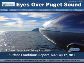 Eyes Over Puget Sound: Surface Conditions Report - February 17, 2015