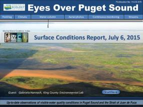 Eyes Over Puget Sound: Surface Conditions Report - July 6, 2015