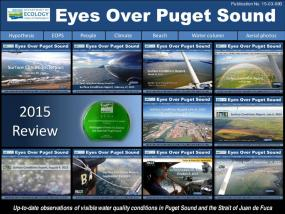 Eyes Over Puget Sound: Surface Conditions Report - 2015 Year Review