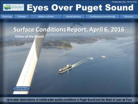 Eyes Over Puget Sound: Surface Conditions Report – April 6, 2016