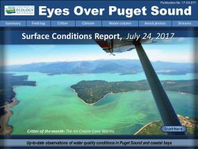 Eyes Over Puget Sound: Surface Conditions Report – July 24, 2017