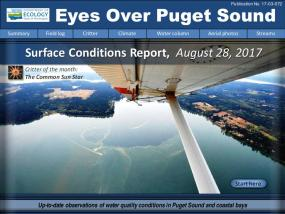 Eyes Over Puget Sound: Surface Conditions Report August 28, 2017