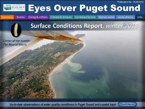 Eyes Over Puget Sound: Surface Conditions Report – Winter 2018