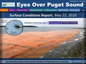 Eyes Over Puget Sound: Surface Conditions Report – May 22, 2018