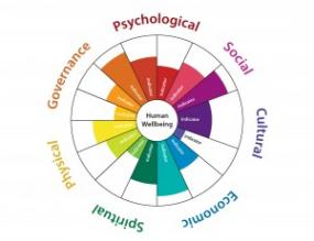 "A ""medicine wheel"" graphic that will be used to showcase HWB indicators; copyright Biedenweg et al."