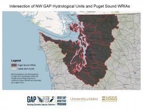 Interesection of NW GAP Hydrological Units and Puget Sound WRIAs