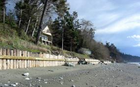 Timber pike seawall below a house along the shoreline.