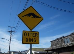Otter crossing street sign. Photo: Joe Gaydos