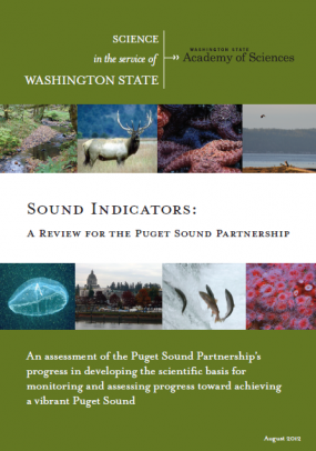 Sound indicators report cover page