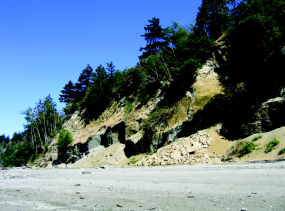 Bluff failures contribute sediment to beaches