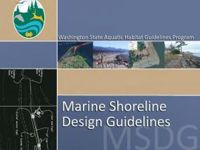 Marine Shoreline Design Guidelines (MSDG) report cover