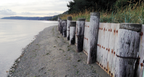 Bulkhead in Puget Sound. Photo by Christopher Dunagan