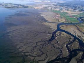 A large river delta in Puget Sound. Photo courtesy of Puget Sound Nearshore Ecosystem Restoration Project