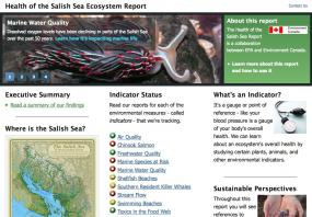 Screenshot of 2013 Health of the Salish Sea Ecosystem Report