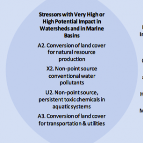 Stressors with Very High or High Potential Impact in Puget Sound