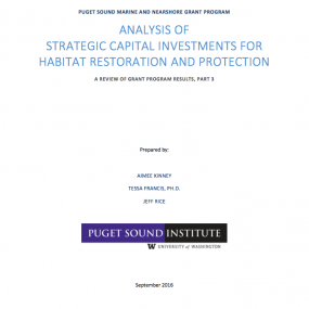 report cover: Analysis of strategic capital investments for habitat restoration and protection