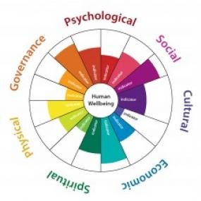 "A ""medicine wheel"" graphic that will be used to showcase HWB indicators; copyright Biedenweg et al."