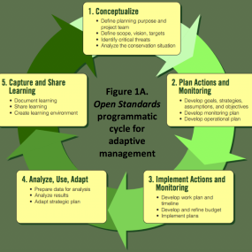 Steps in the Adaptive Management cycle. Figure 1 from  the article.