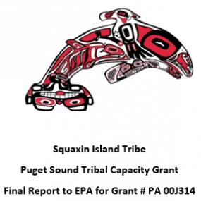 Puget Sound Tribal Capacity Grant