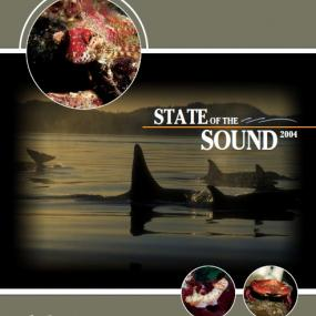 State of the Sound 2004 report cover image