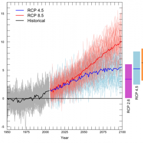 All scenarios project warming for the 21st century. The graph shows average yearly temperatures for the Pacific Northwest relative to the average for 1950-1999 (gray horizontal line). The black line shows the average simulated temperature for 1950–2011, while the grey lines show individual model results for the same time period. Thin colored lines show individual model projections for two emissions scenarios (low: RCP 4.5, and high: RCP 8.5)[ ], and thick colored lines show the average among models projecti