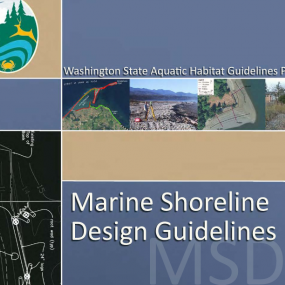 Marine Shoreline Design Guidelines (MSDG) report cover