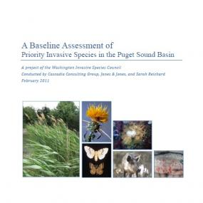 A baseline assessment report cover page