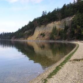 Camano Island State Park coastline. Image courtesy of WDFW.