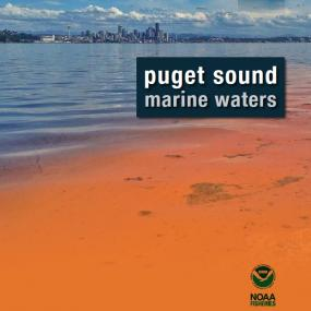 2013 Puget Sound Marine Waters Overview