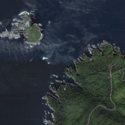 Aerial satellite image of shore type 1 at Cape Flattery