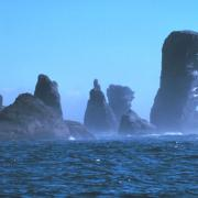 Cape Flattery, Washington. Courtesy NOAA Sanctuaries Collection