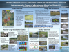 Hansen Creek Alluvial Fan and Wetland restoration project (Poster #1)