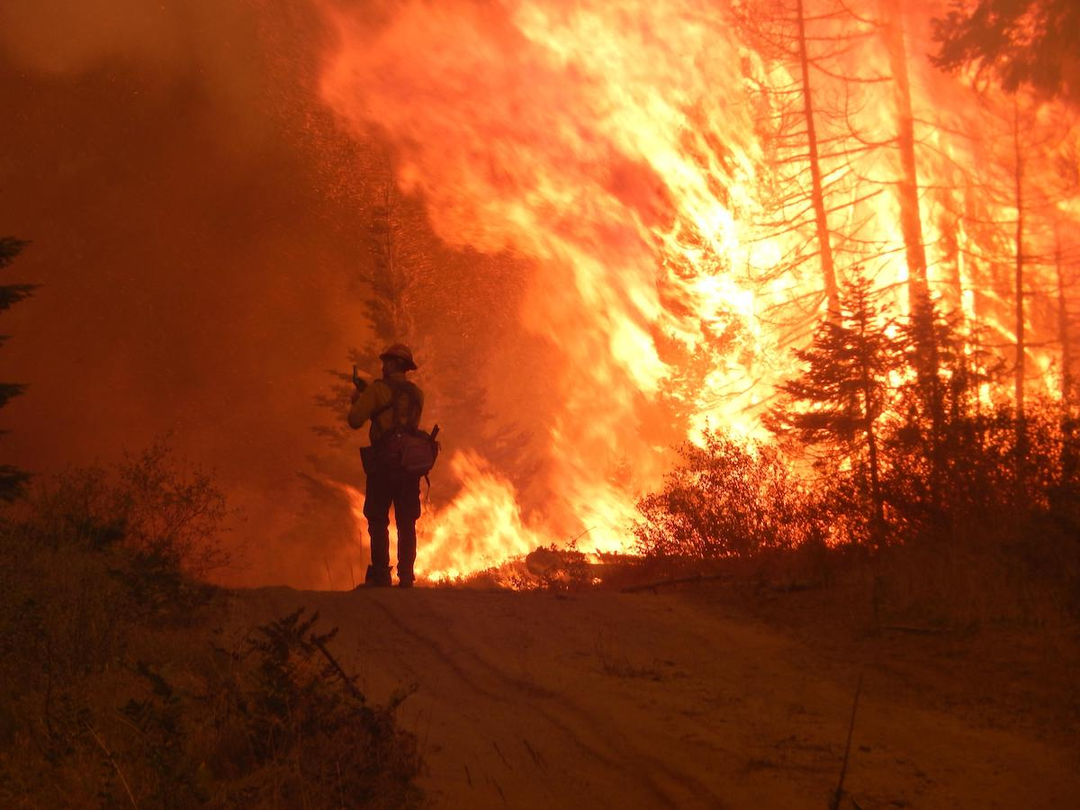 The Cougar Creek Fire in Klickitat County, Washington, 2015. Photo: USFS